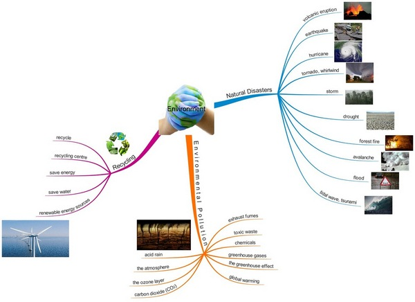Động từ về chủ đề môi trường