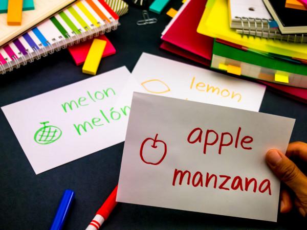 FlashCards giúp việc học từ vựng trở nên dễ dàng hơn