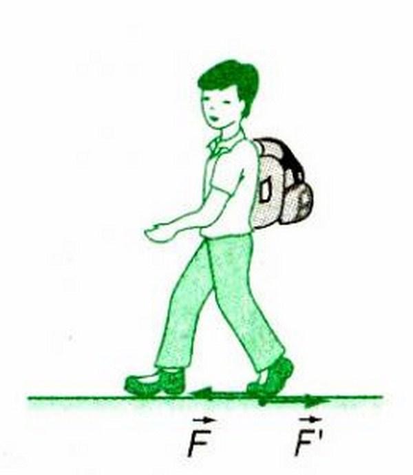 Khi đi bộ ta tác dụng lực vào mặt đất