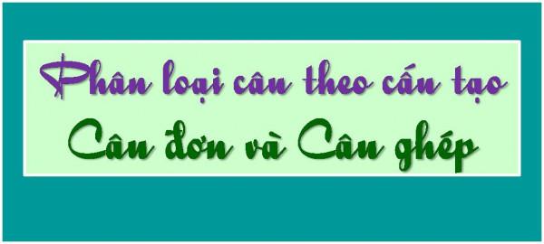 Phân loại câu trong tiếng Việt