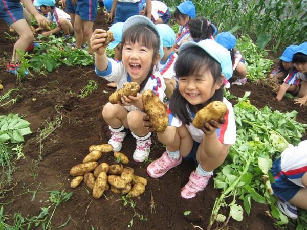 Cách giáo dục kỹ năng sống phù hợp cho trẻ