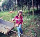 Gia sư dạy Tiếng Anh Tiểu học, THCS và THPT tại quận Thanh Xuân